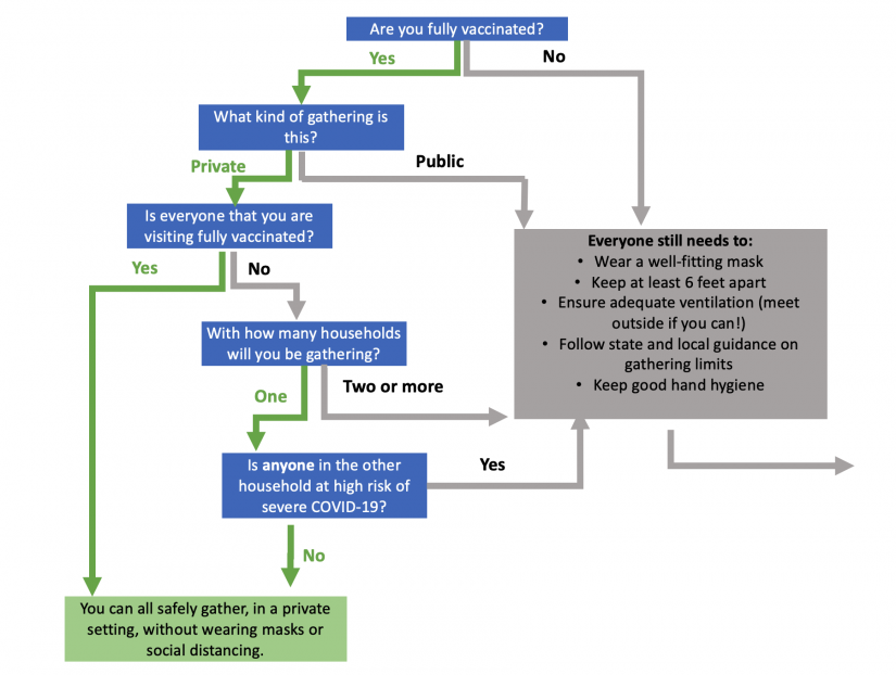 Flow chart shows decision tree for determining whether it is safe to gather in groups without masking, social distancing