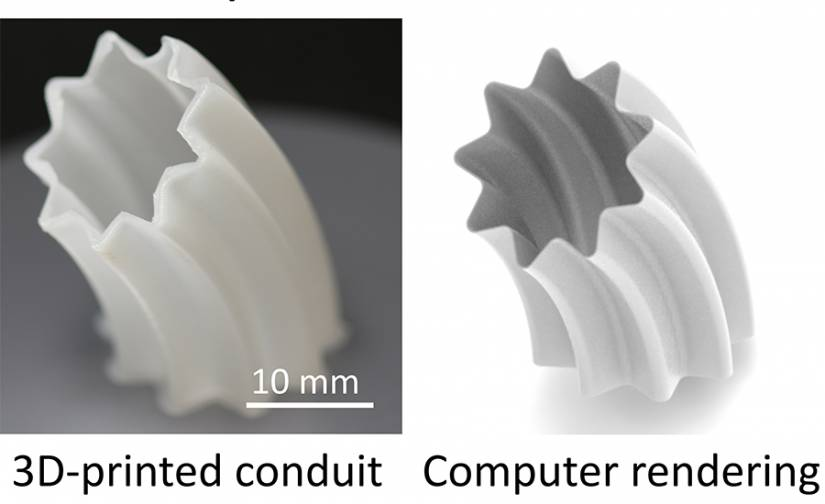 Composite image of 3D printed conduit and its computer rendering