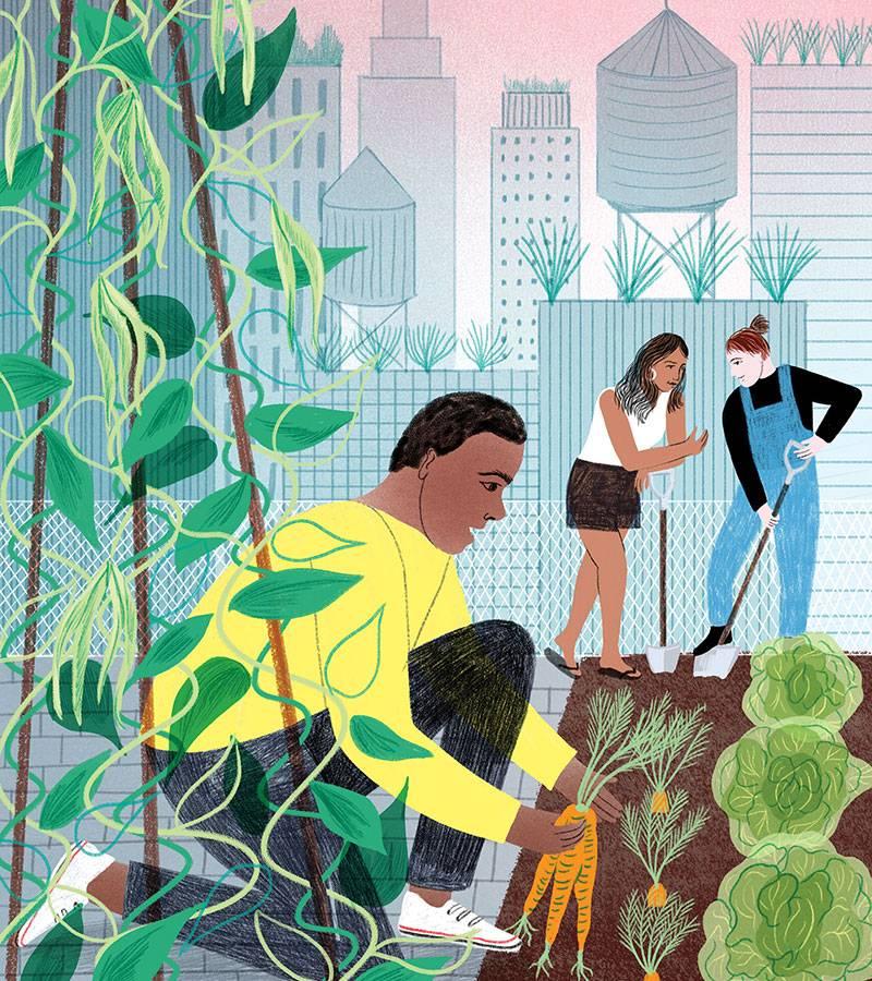 Gardeners tending to a city plot