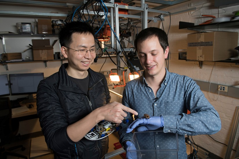 Researchers hold a robot and roach