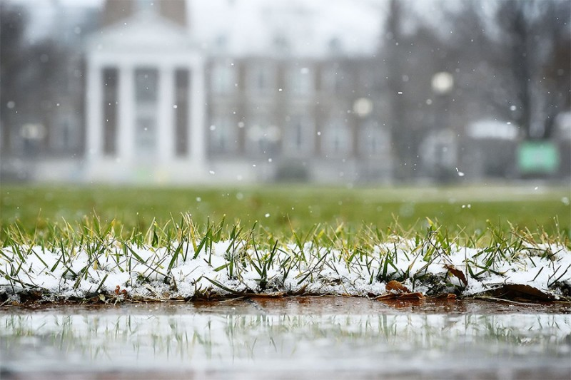 Snow falls on the grass and brick walkway with Gilman Hall in the background