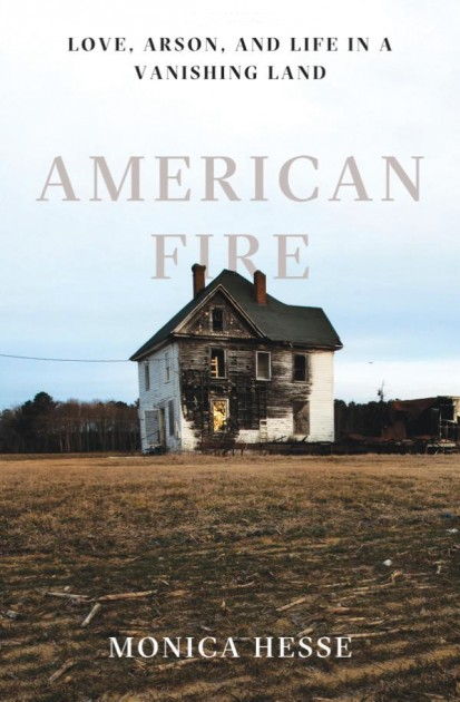 Cover image of 'American Fire'