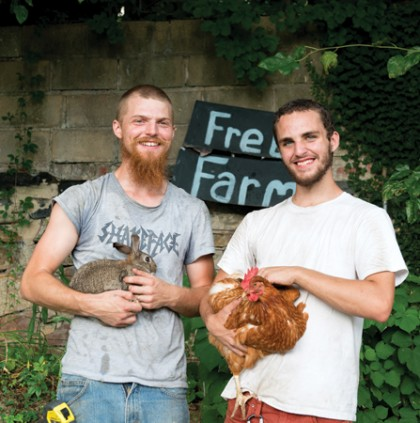 Baltimore Free Farm