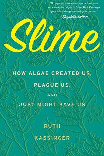 Slime book cover