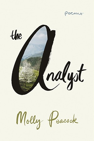 Book cover for 'The Analyst'