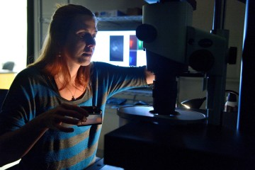 A woman holds a square of jelly in one hand and adjusts a knob on a microscope with the other hand