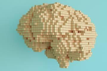 Illustration of a brain made of building blocks