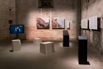 Archaeology of Disability exhibition includes carved stone stools and a television screen