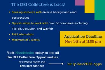 DEI collective 2022