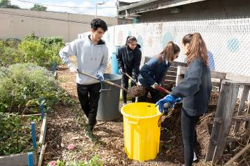 President's Day of Service