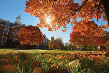 JHU's Wyman Quad in the fall