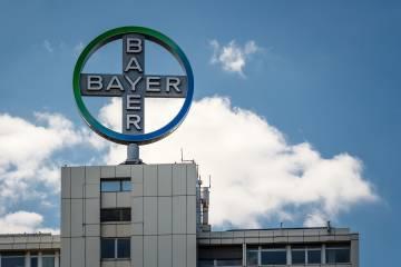 Bayer sign