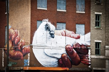 Giant mural of hands holding white dove on brick Baltimore rowhome with boarded up windows