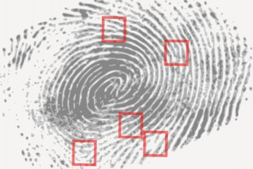 Close-up of fingerprint pattern with small red boxes around key characteristics