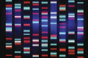 Genetic sequence with color coding