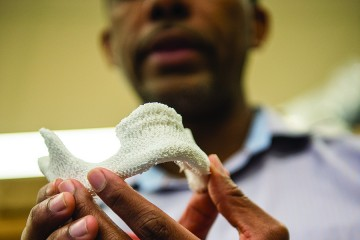 The jawbone is made of a white porous material
