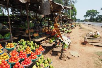 A market stand selling produce along a roadside