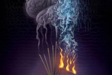 An illustration of neural fragility in the brain
