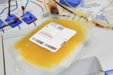 Blood plasma bags