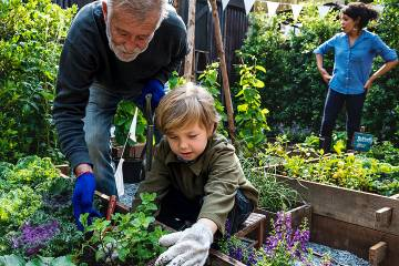 Senior man gardening with young grandchild