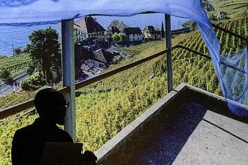 An image is projected on a screen showing a hilltop vineyard with a blue net cascading in the wind. In the lower left corner of the image, there is the silhouette of a man with thick glasses