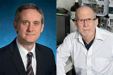 Hopkins scientists Cristian Tomasetti (left) and Bert Vogelstein