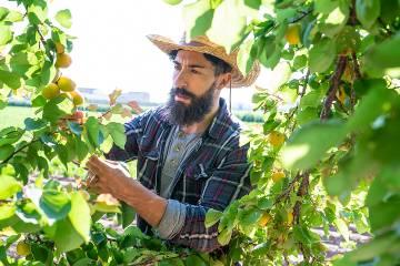 Man wearing a hat while gardening