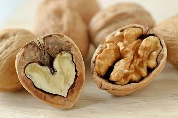 Walnuts in their shells