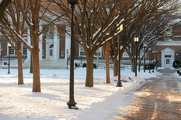 A photograph of a snowy Homewood campus with a cleared pathway