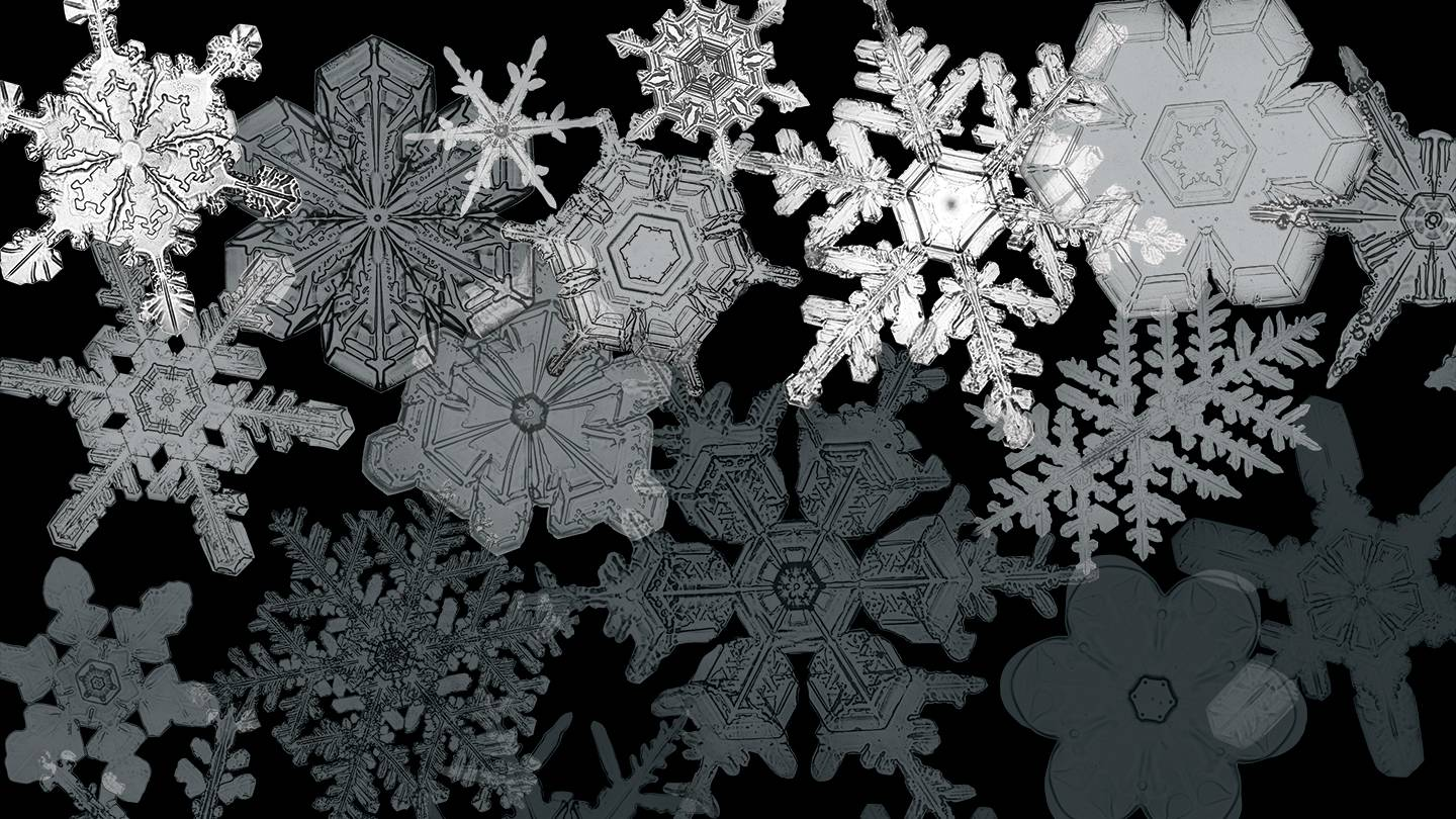 Images of snow crystals