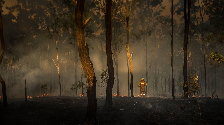 Firefighter surveys damage from fire in Queensland, Australia