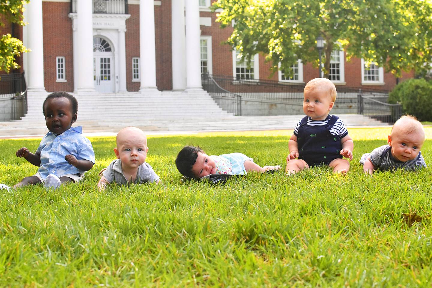 Five babies in the grass
