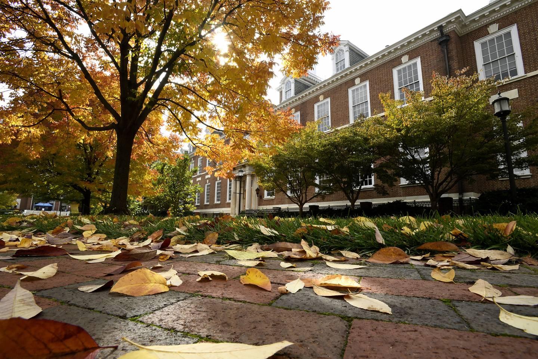 Campus in the autumn