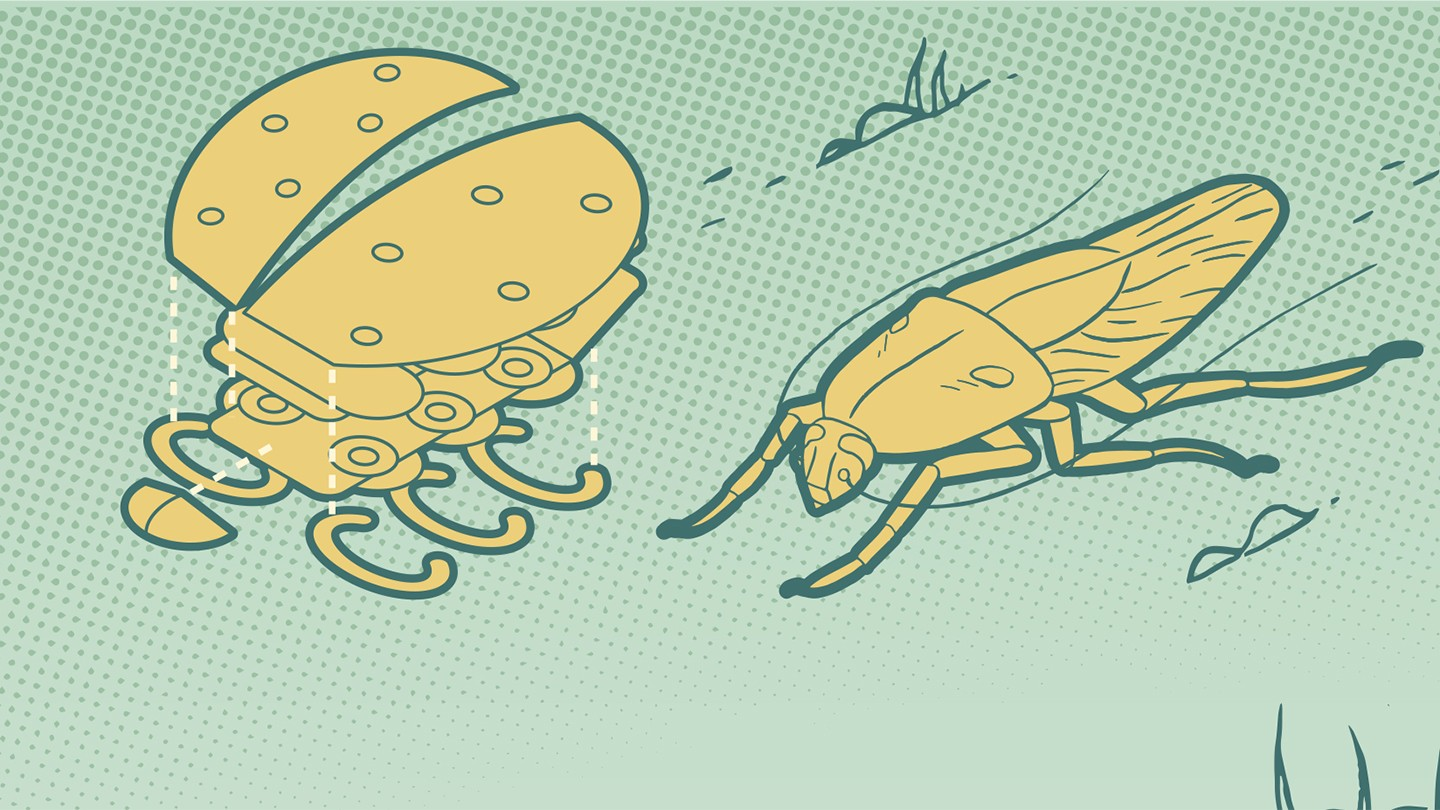 Illustration of a robot and cockroach