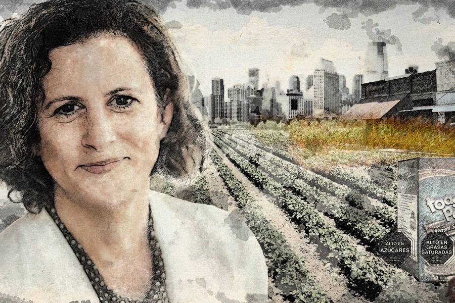Illustration of Jess Fanzo superimposed on a barren landscape with food labels