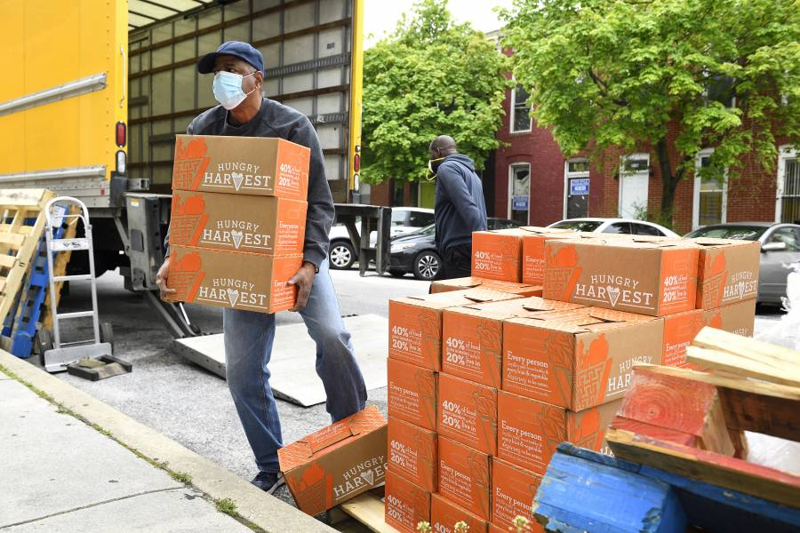 A volunteer moves boxes of food