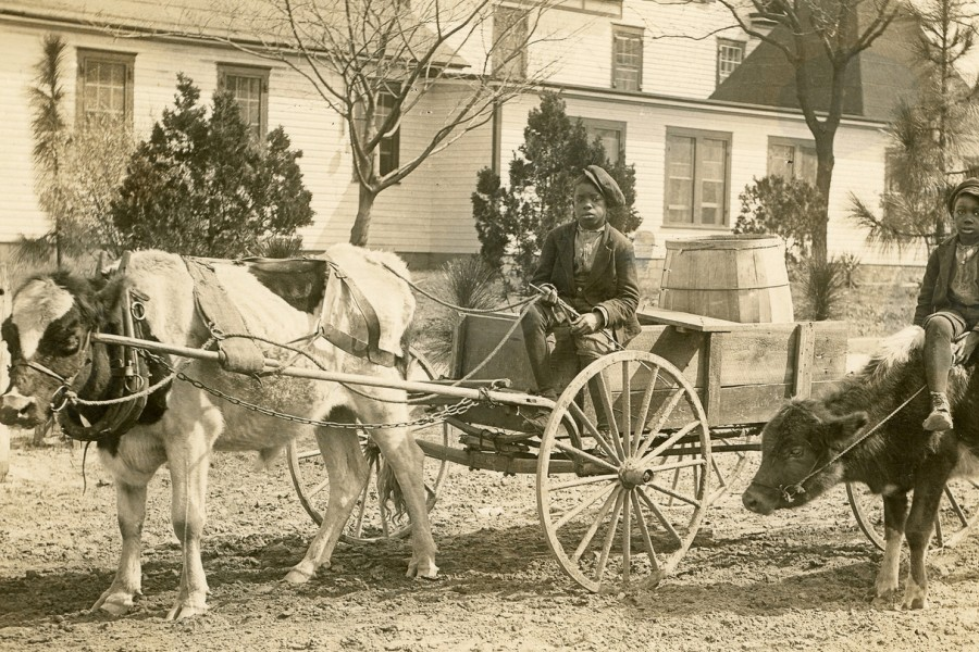 Sepia photo of two young black boys sitting on mules/horses that are connected to carriages