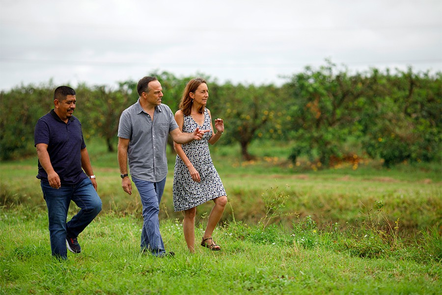 Greg Asbed (center), Lucas Benitez (left), and Laura Germino walk in a field with rows of fruit trees in the background