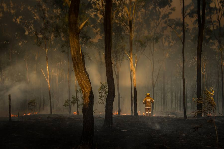 Firefighter surveys damage from fire in Queensland, Australia