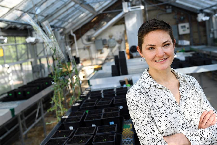 Postdoc Ava Hoffman in the Homewood greenhouse