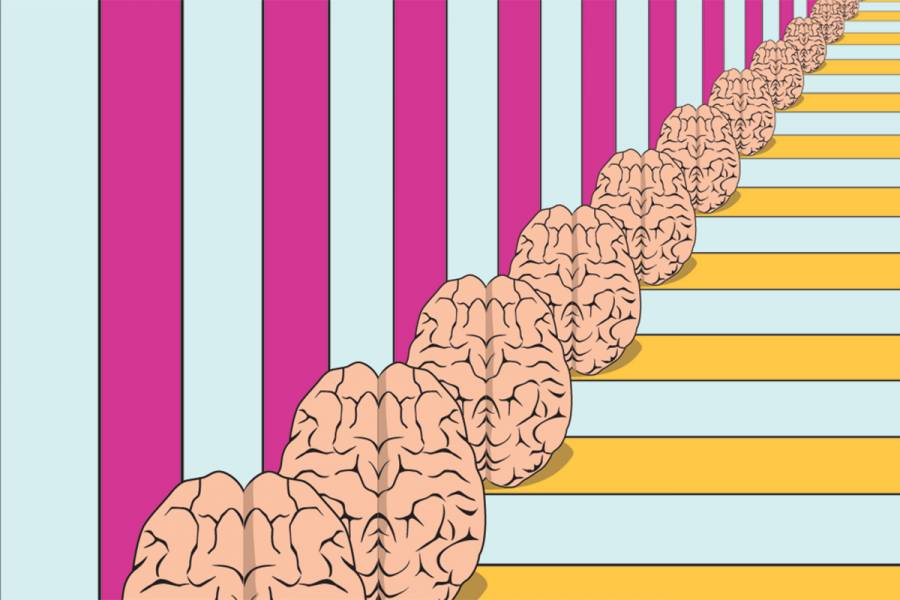 Several brains in a line, each one getting smaller and smaller