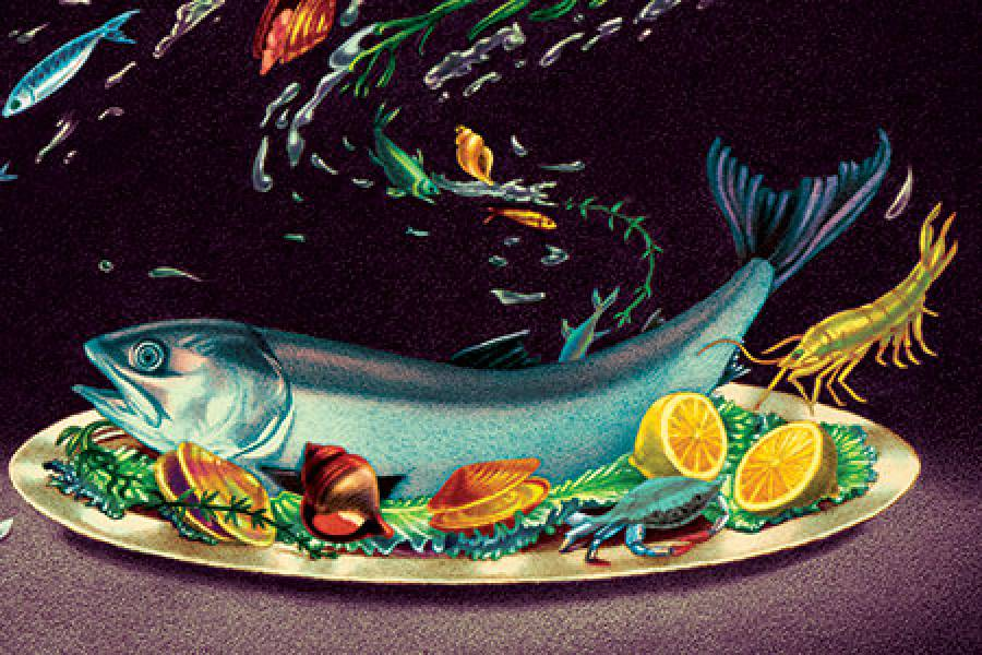illustration of a fish on a plate