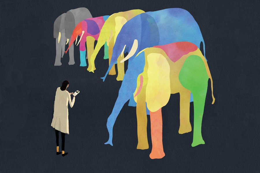 Illustration shows one gray elephant in a long line of multicolored elephant offspring with a person standing nearby looking at a device