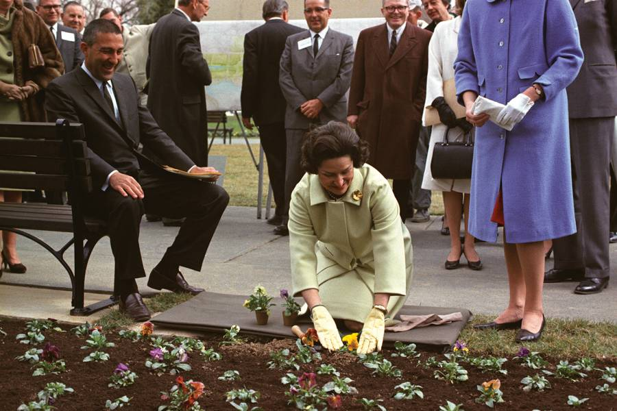 Lady Bird Johnson plants pansies as Interior Secretary Stewart Udall and others look on.