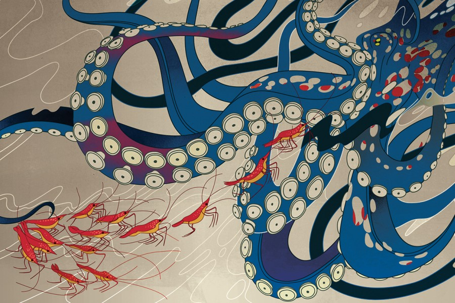 Traditional Japanese-style illustration shows an octopus hunting shrimp
