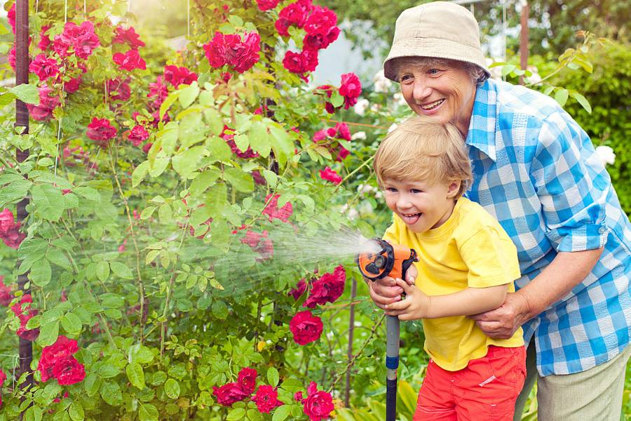 Grandparent and young child watering flowers