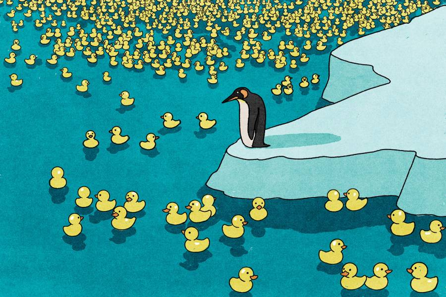 a penguin on an iceberg looks out at thousands of floating rubber duckies