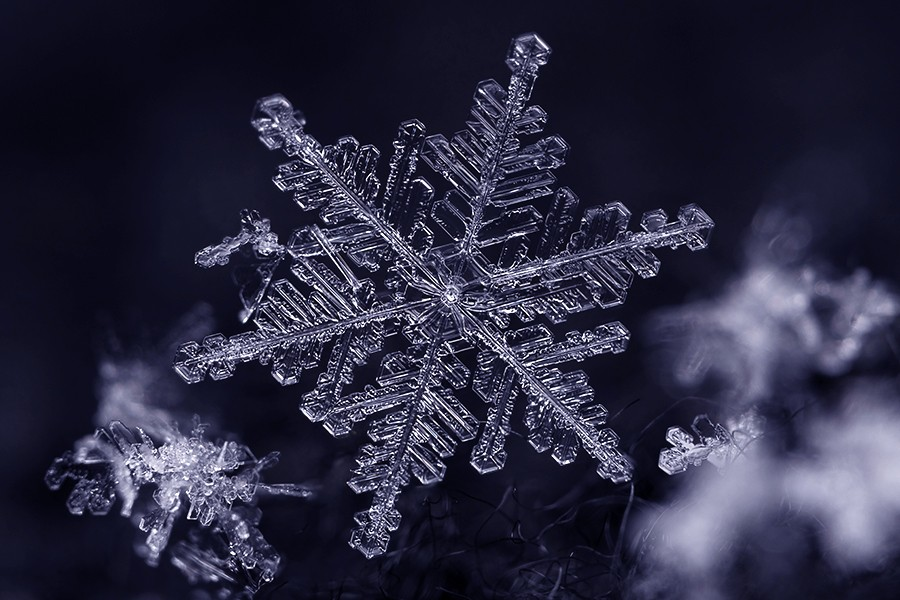 Close-up image of symmetrical snowflake
