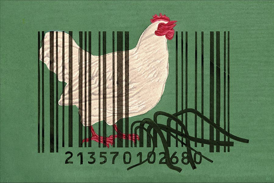 Illustration depicts a chicken encased in cage bars made out of barcode