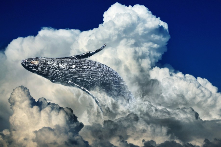 A sparkling whale flops backwards on a background of fluffy clouds and blue sky.